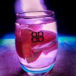 Los mejores licores de bayas - 6 tipos de recetas de licores de bayas