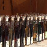 Diferentes tipos de vino de palma