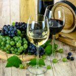 El mejor vino para principiantes