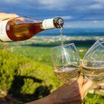 Los 10 mejores vinos portugueses